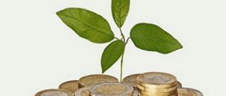 как растут долги по микрокредиту